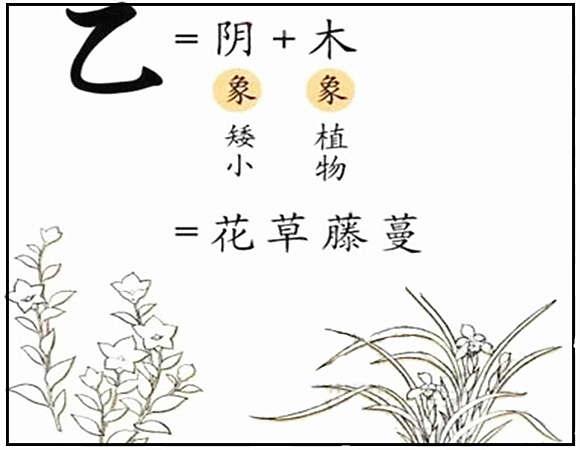 乙木是什么意思