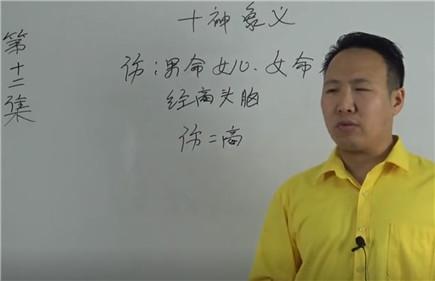 十神象义详解大全(12)