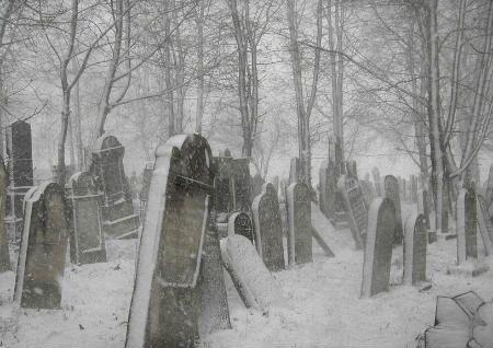大富大贵坟墓风水