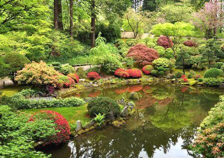 别墅花园种树风水