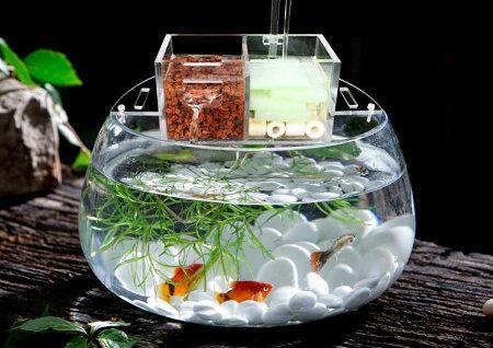 办公室鱼缸风水布局