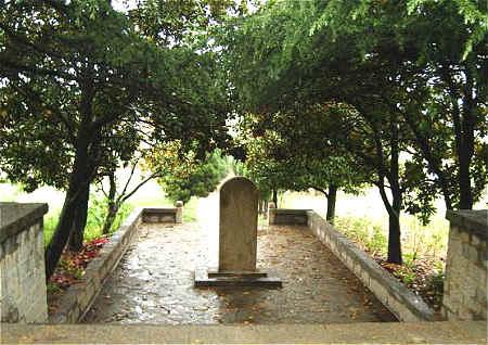 坟地周围栽什么树风水好