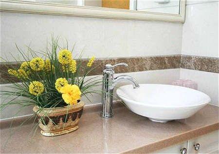 卫生间招财风水植物