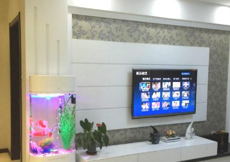 电视柜上放鱼缸好吗