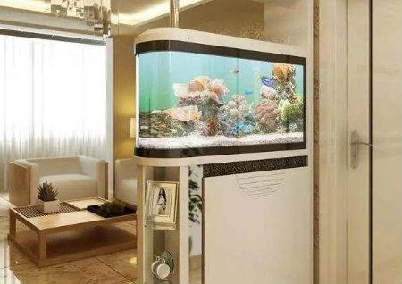 进门见鱼缸风水好吗