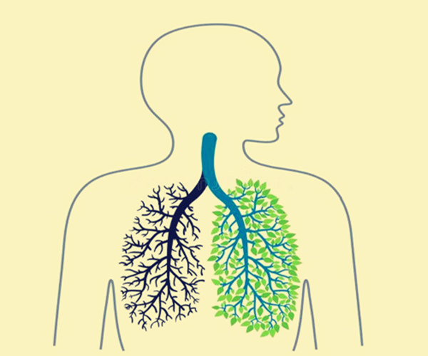 八字看肺病的标志