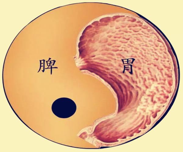 八字看脾胃疾病的标志