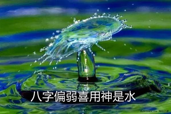 八字偏弱喜用神是水.jpg